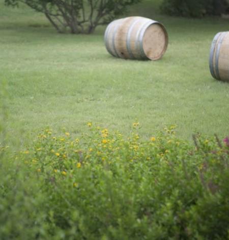 duchman-family-winery-1-19.jpg