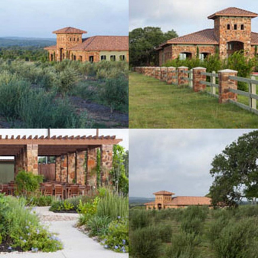 texas-hill-country-olive-co-1.jpg